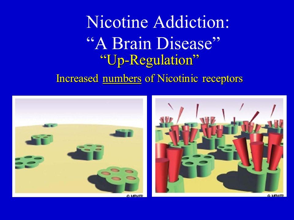 Nicotine Addiction: A Brain Disease Up-Regulation Increased numbers of Nicotinic receptors