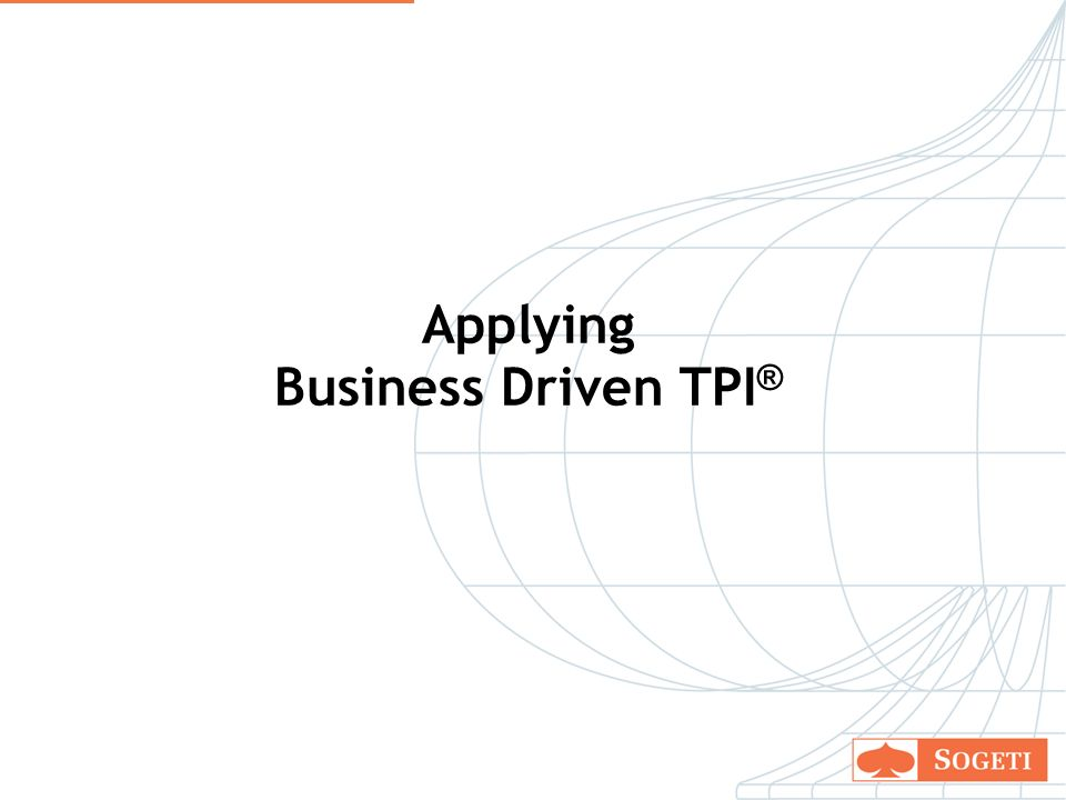19 Applying Business Driven TPI ®