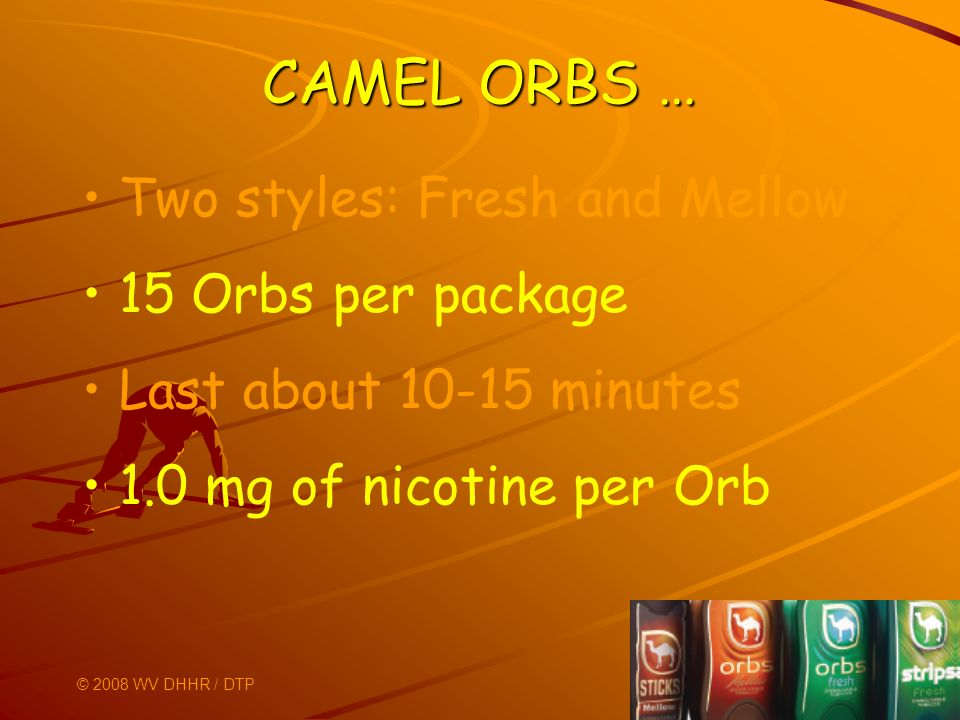 CAMEL ORBS … Two styles: Fresh and Mellow 15 Orbs per package Last about 10-15 minutes 1.0 mg of nicotine per Orb © 2008 WV DHHR / DTP