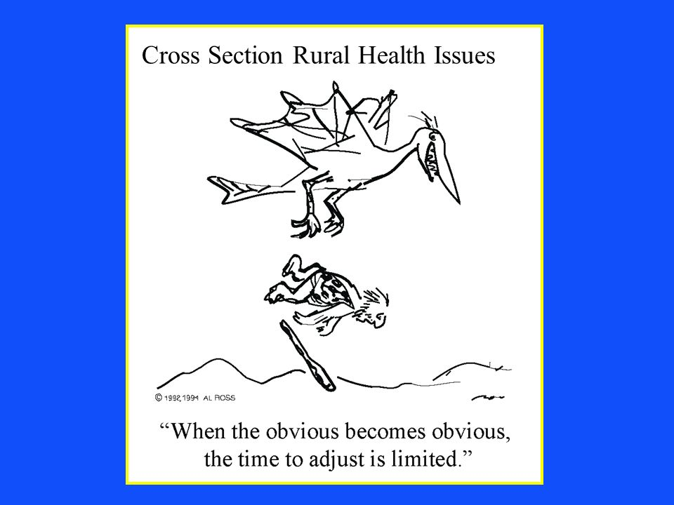 Rural Wisconsin Health Cooperative Cross Section Rural Health Issues