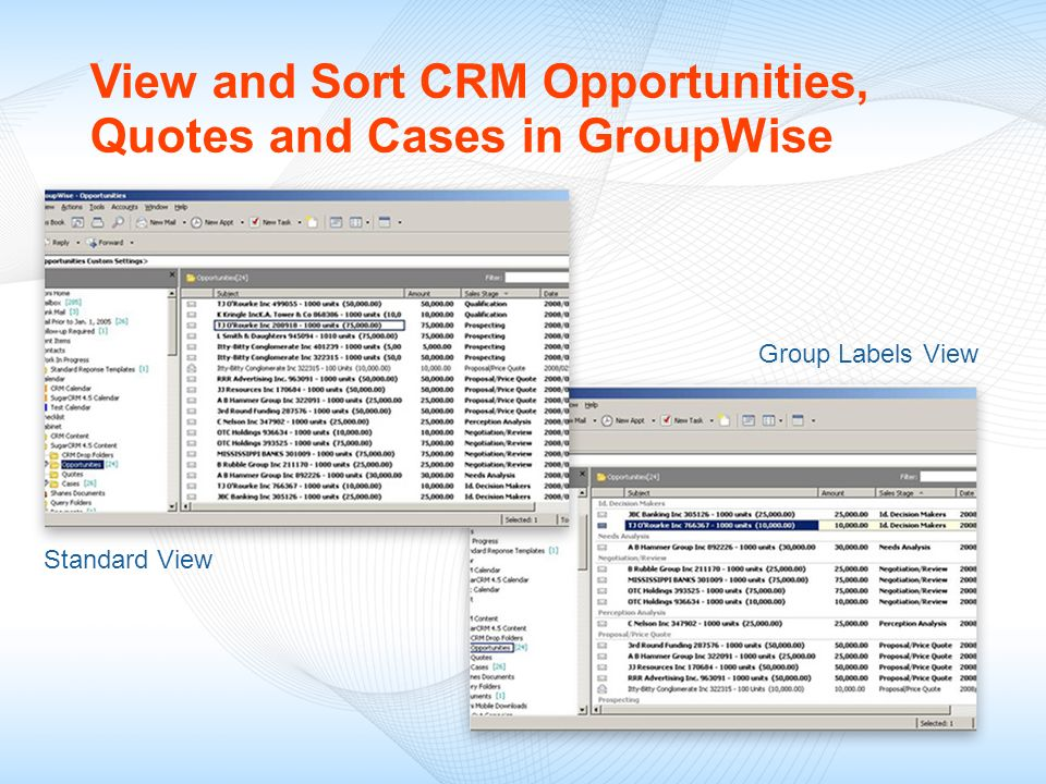 View and Sort CRM Opportunities, Quotes and Cases in GroupWise Group Labels View Standard View