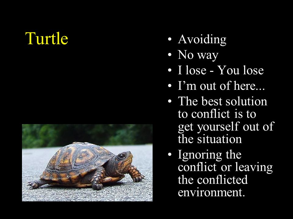 Turtle Avoiding No way I lose - You lose Im out of here... The best solution to conflict is to get yourself out of the situation Ignoring the conflict