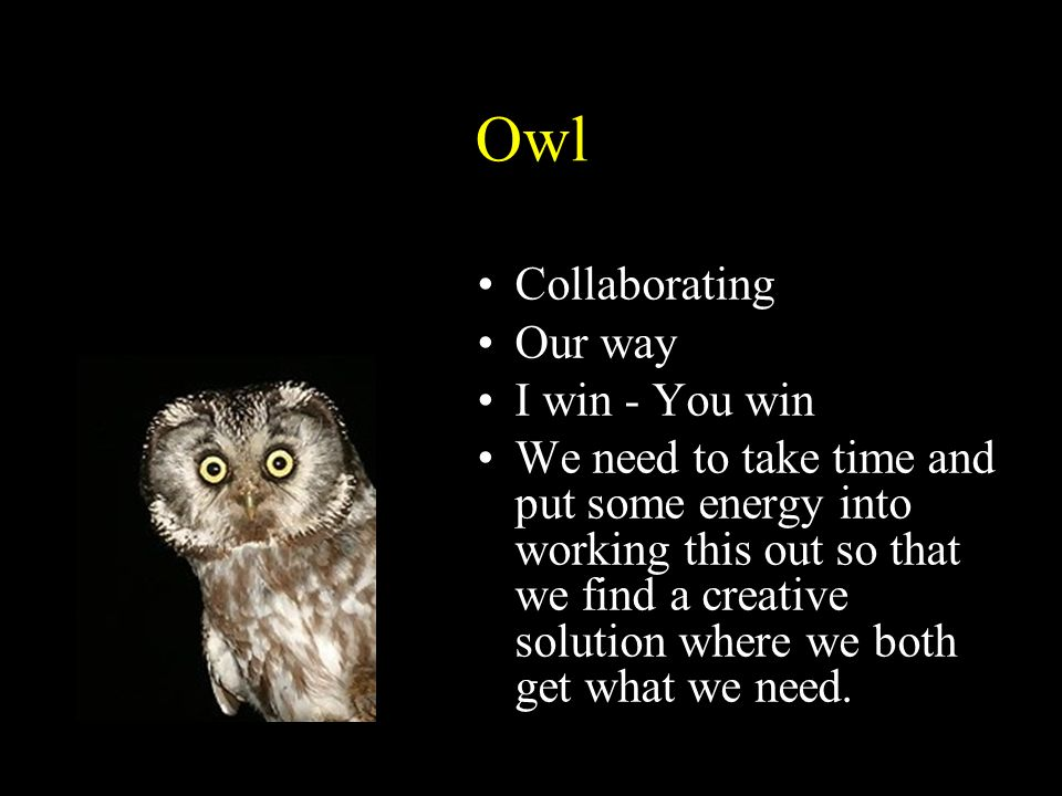 Owl Collaborating Our way I win - You win We need to take time and put some energy into working this out so that we find a creative solution where we