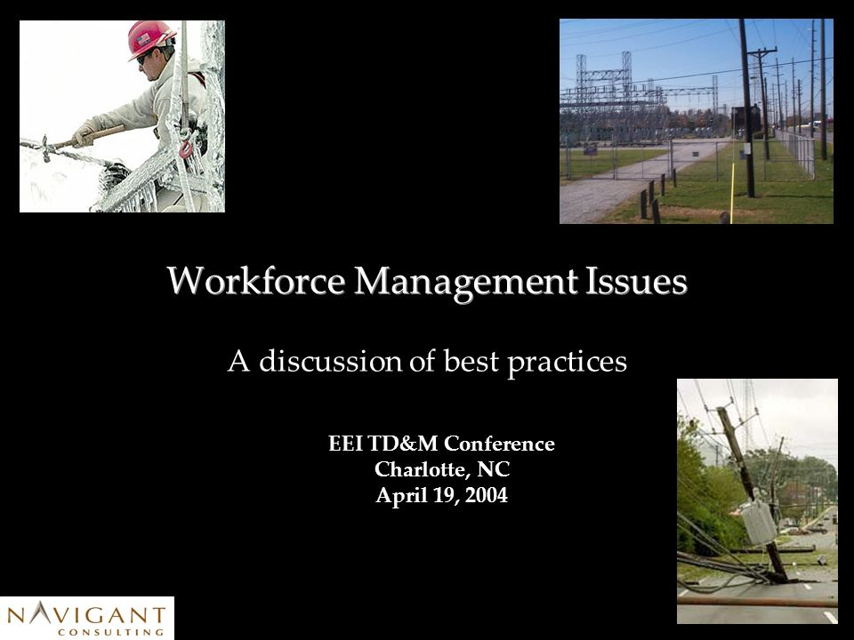 Workforce Management Issues A discussion of best practices EEI TD&M Conference Charlotte, NC April 19, 2004