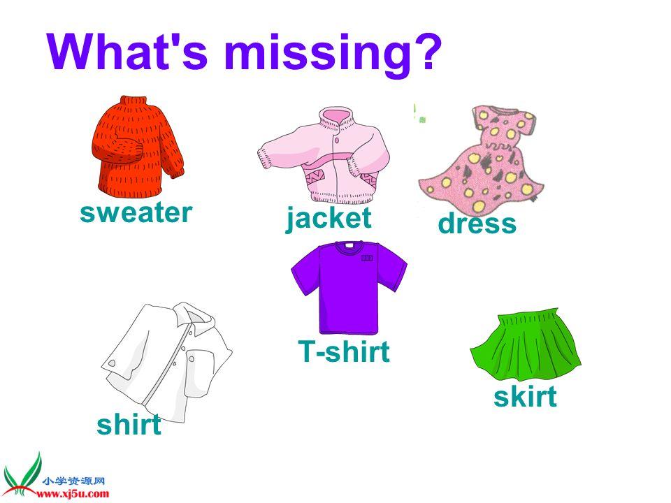 sweater jacket T-shirt skirt dress shirt
