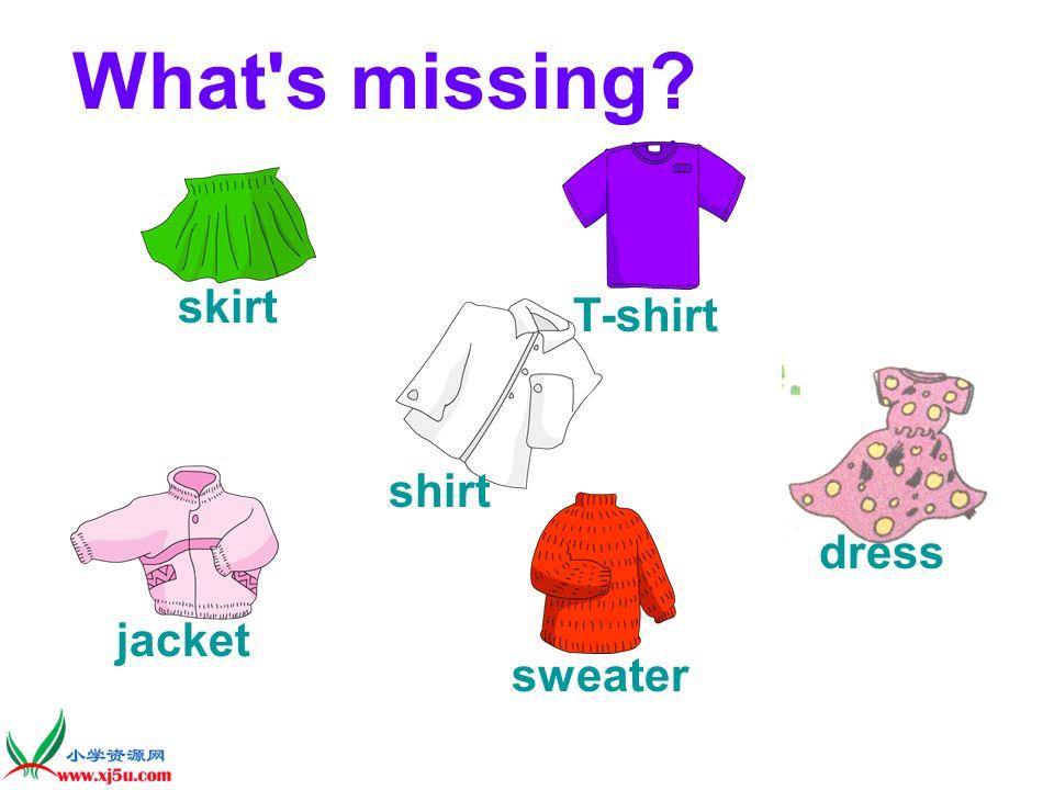 jacket What's missing? shirt T-shirt skirt dress sweater