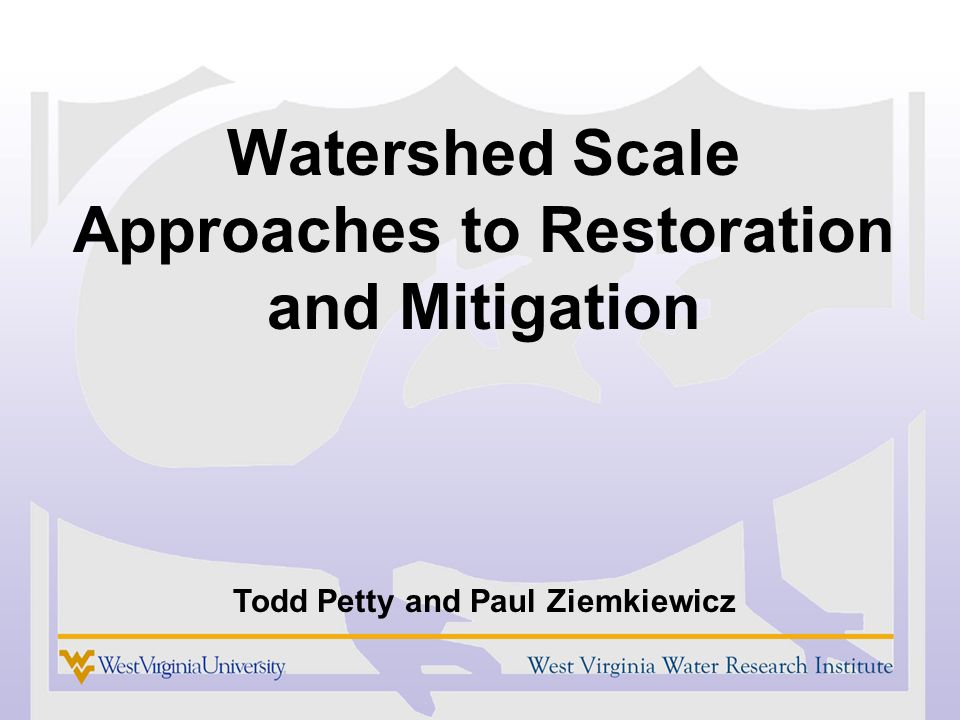Watershed Scale Approaches to Restoration and Mitigation Todd Petty and Paul Ziemkiewicz