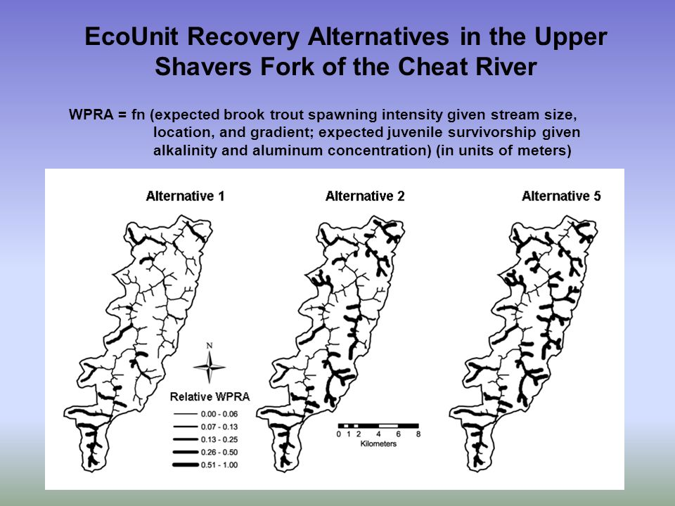 EcoUnit Recovery Alternatives in the Upper Shavers Fork of the Cheat River WPRA = fn (expected brook trout spawning intensity given stream size, location, and gradient; expected juvenile survivorship given alkalinity and aluminum concentration) (in units of meters)