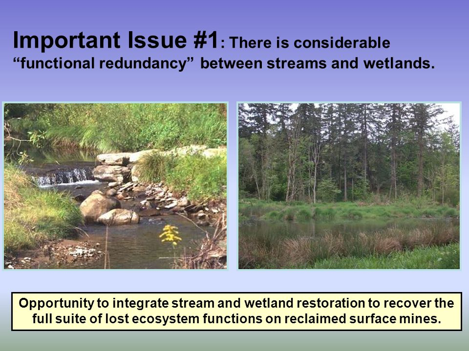 Important Issue #1 : There is considerable functional redundancy between streams and wetlands. Opportunity to integrate stream and wetland restoration
