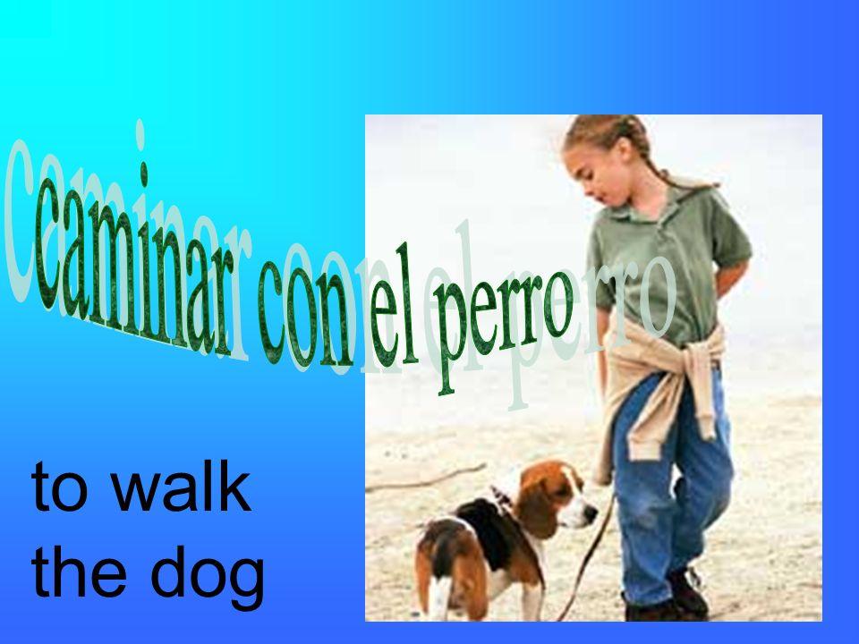 to walk the dog