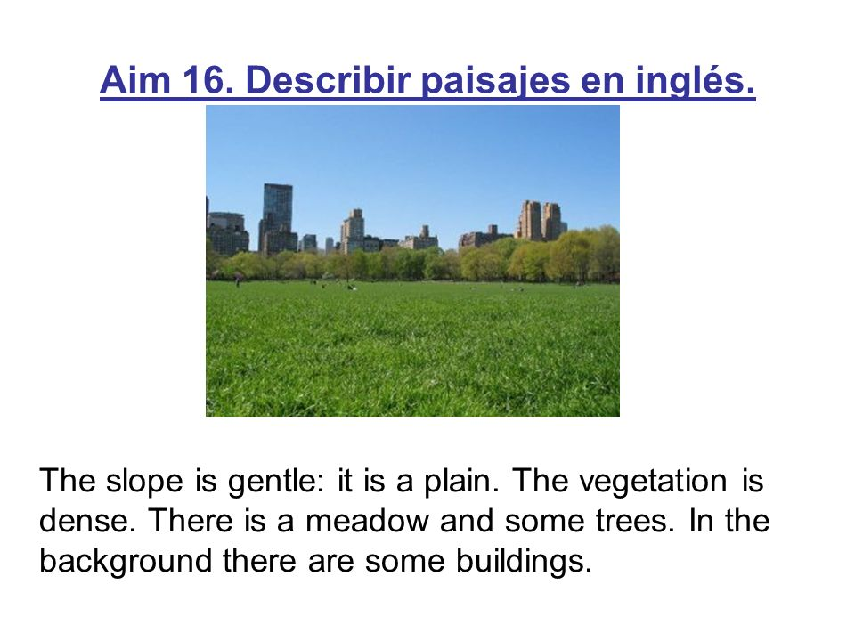 The slope is gentle: it is a plain. The vegetation is dense. There is a meadow and some trees. In the background there are some buildings.