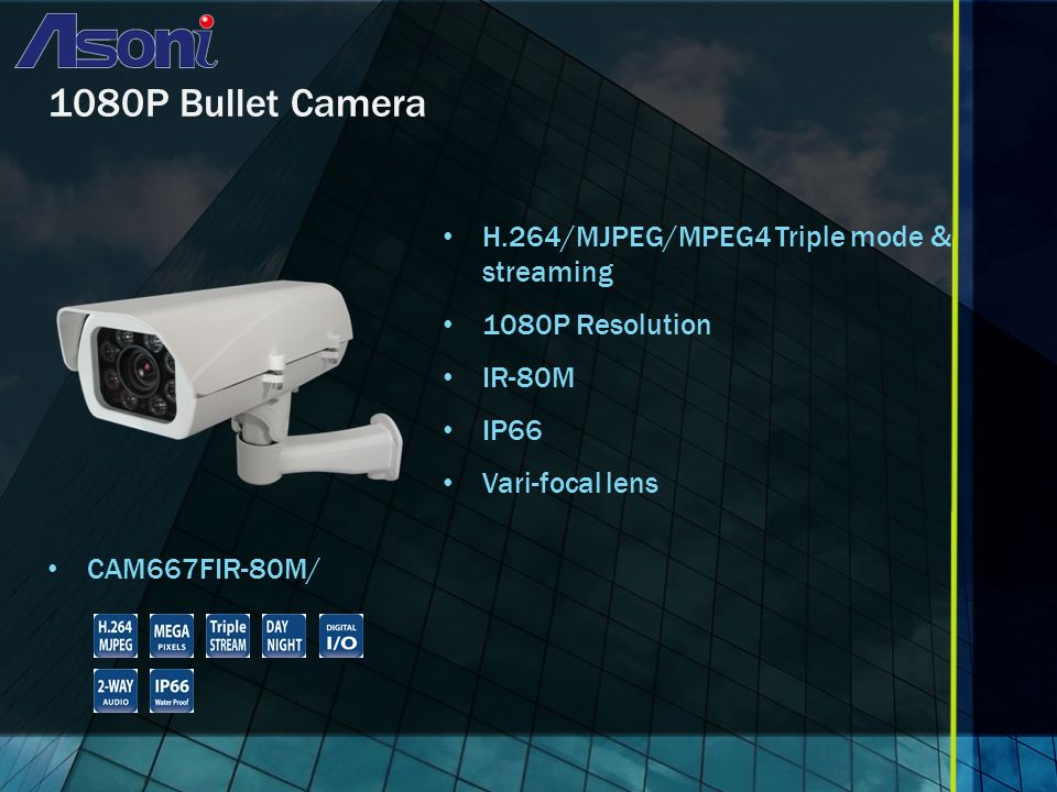 1080P Bullet Camera H.264/MJPEG/MPEG4 Triple mode & streaming 1080P Resolution IR-80M IP66 Vari-focal lens CAM667FIR-80M/