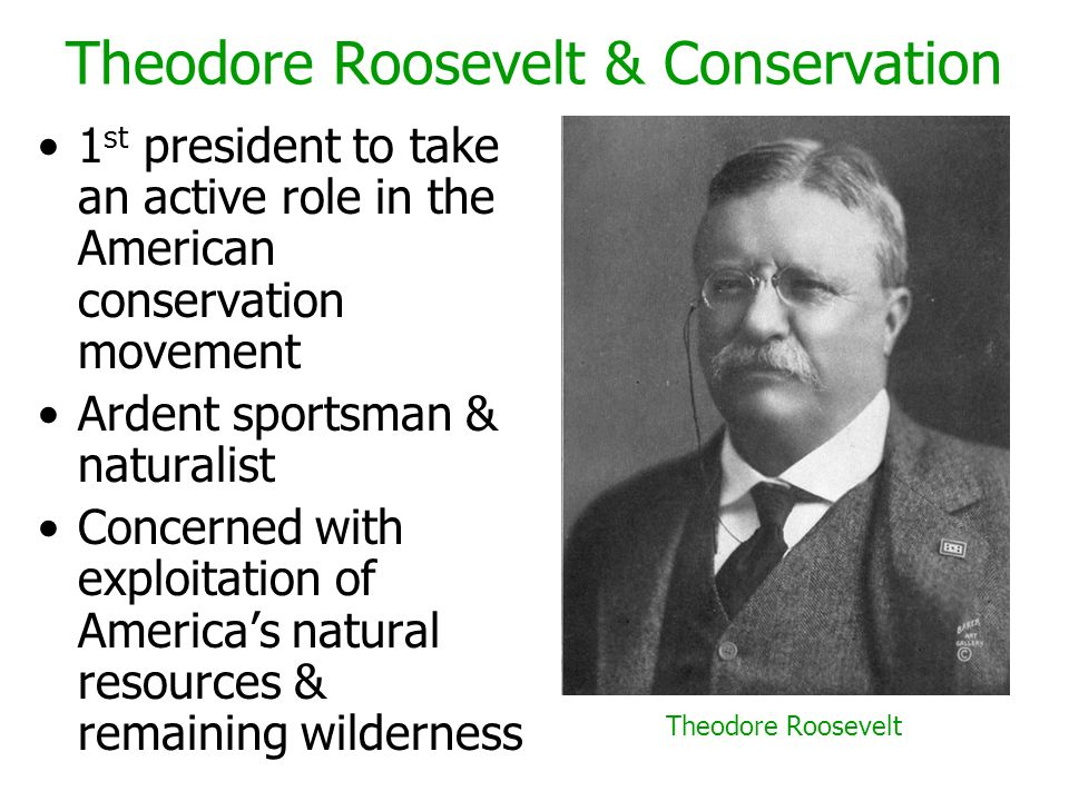 Theodore Roosevelt & Conservation 1 st president to take an active role in the American conservation movement Ardent sportsman & naturalist Concerned