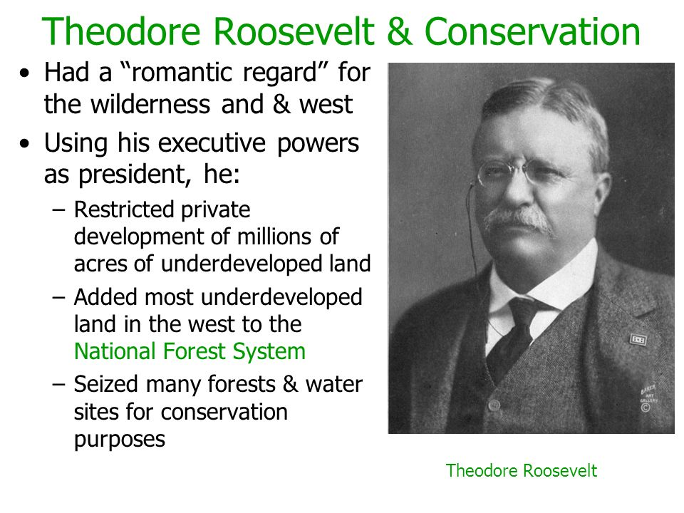 Theodore Roosevelt & Conservation Had a romantic regard for the wilderness and & west Using his executive powers as president, he: –Restricted private