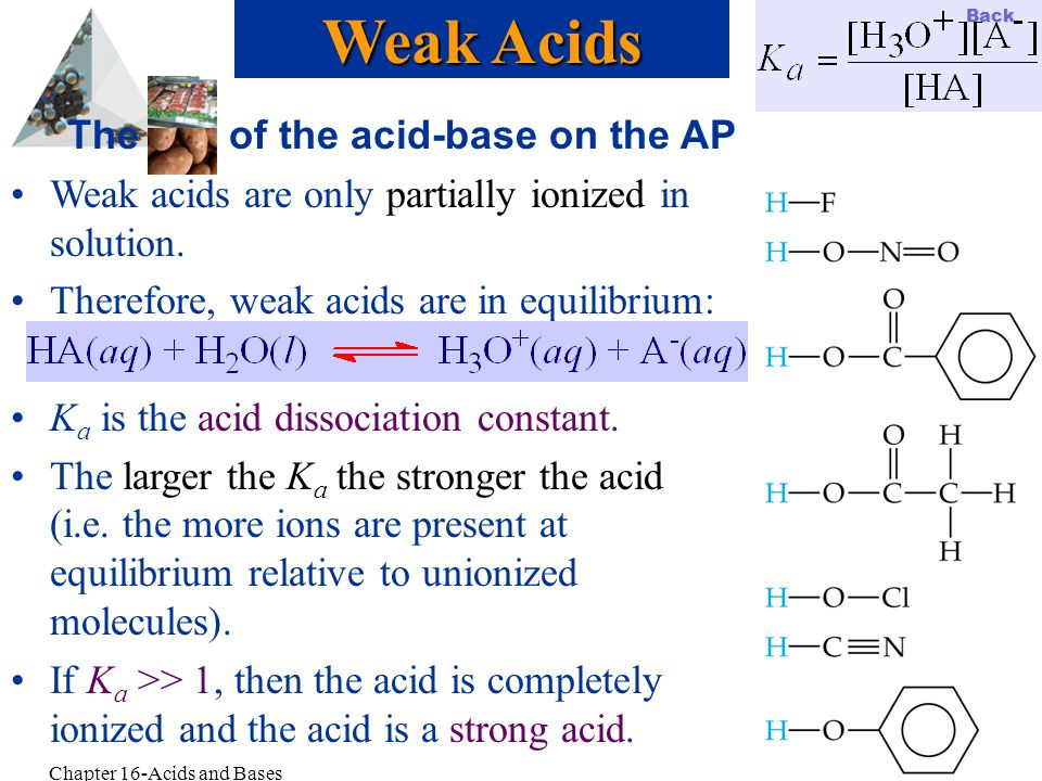 Slide 14 Back Chapter 16-Acids and Bases The of the acid-base on the AP Weak acids are only partially ionized in solution. Therefore, weak acids are i