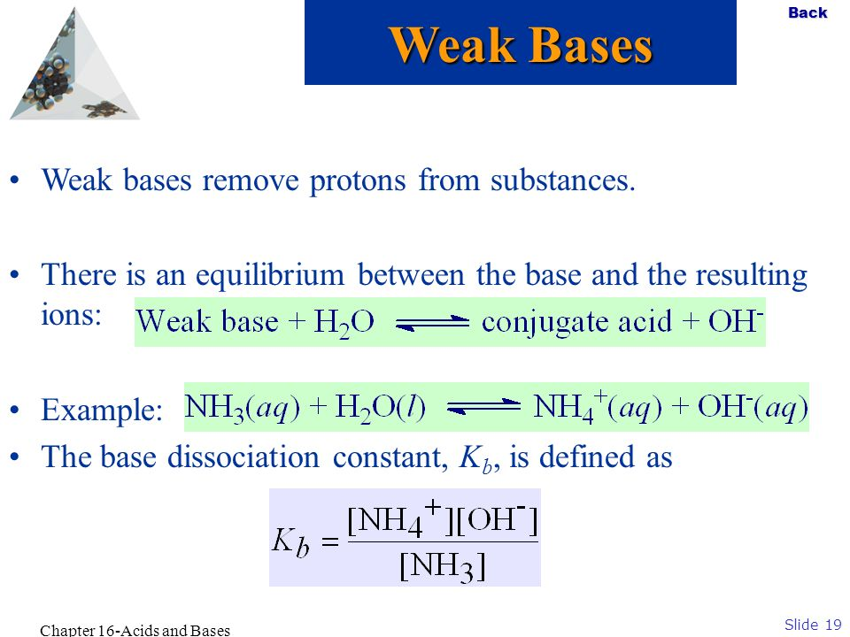 Slide 19 Back Chapter 16-Acids and Bases Weak bases remove protons from substances. There is an equilibrium between the base and the resulting ions: E