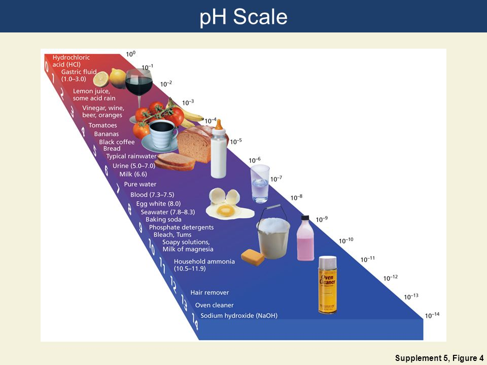 pH Scale Supplement 5, Figure 4