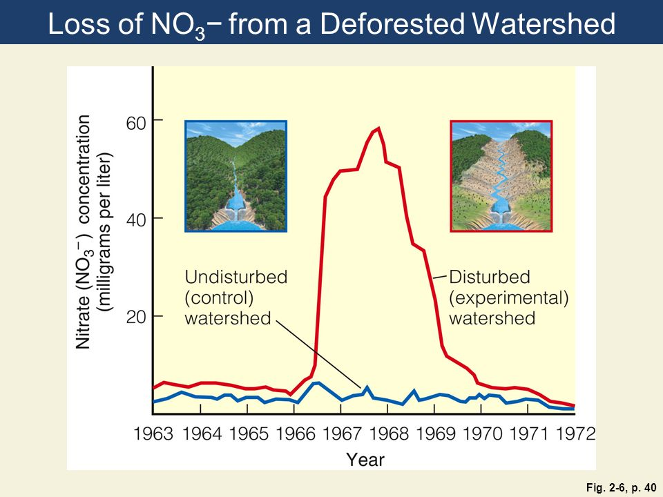 Loss of NO 3 from a Deforested Watershed Fig. 2-6, p. 40