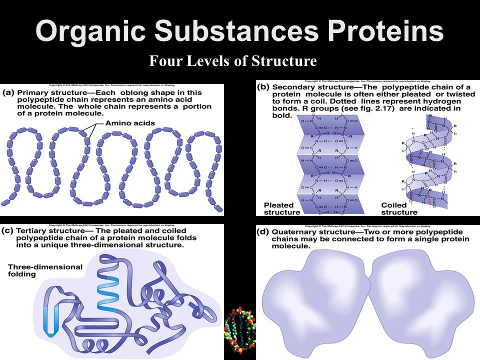 Organic Substances Nucleic Acids constitute genes play role in protein synthesis building blocks are nucleotides DNA (deoxyribonucleic acid) – double polynucleotide RNA (ribonucleic acid) – single polynucleotide 2-29