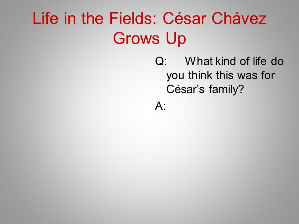 Life in the Fields: César Chávez Grows Up Q:What kind of life do you think this was for Césars family? A: