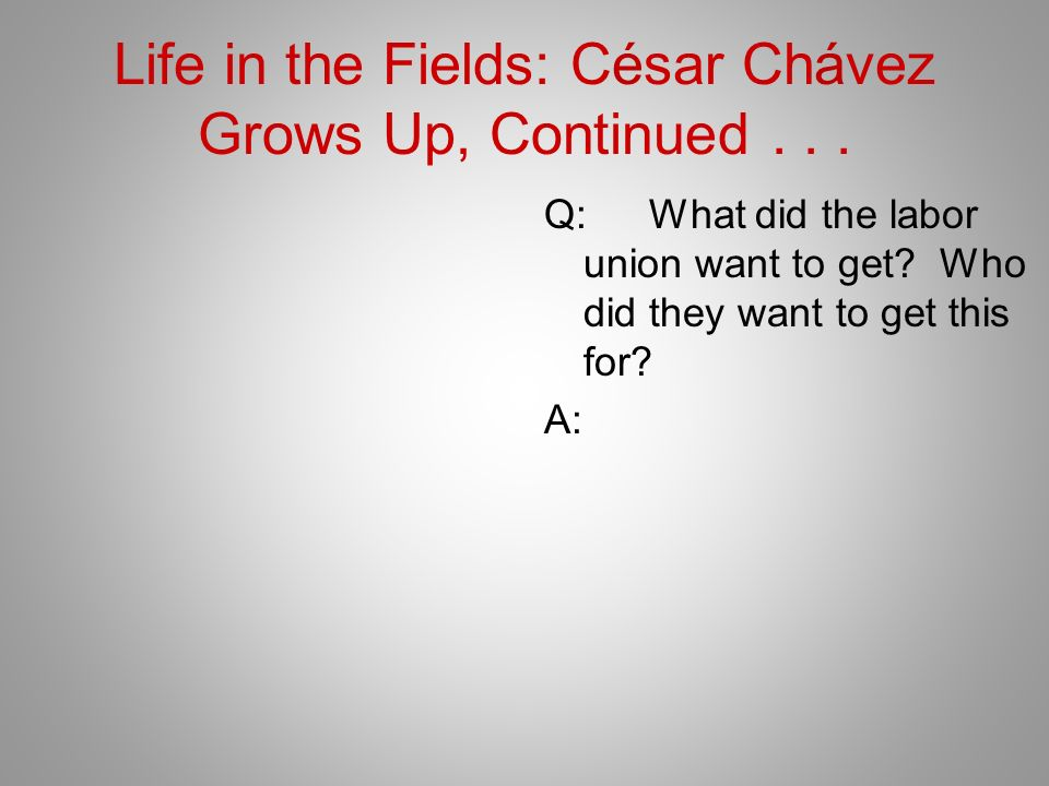 Life in the Fields: César Chávez Grows Up, Continued... Q:What did the labor union want to get? Who did they want to get this for? A: