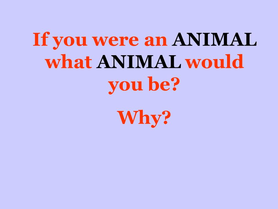 If you were an ANIMAL what ANIMAL would you be Why