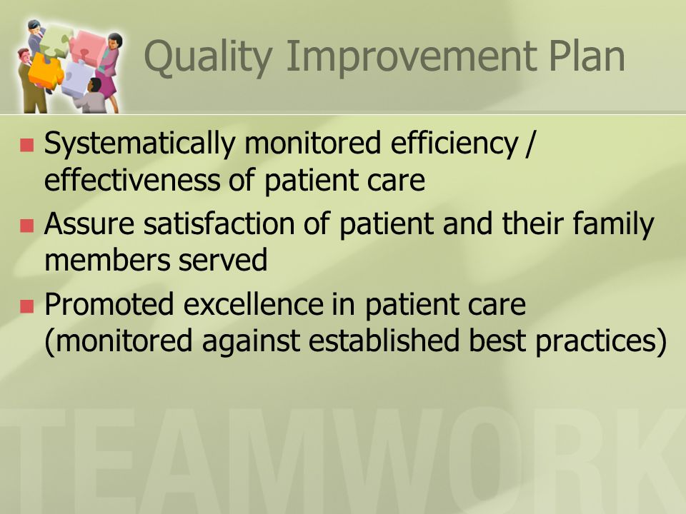 Quality Improvement Plan Systematically monitored efficiency / effectiveness of patient care Assure satisfaction of patient and their family members s