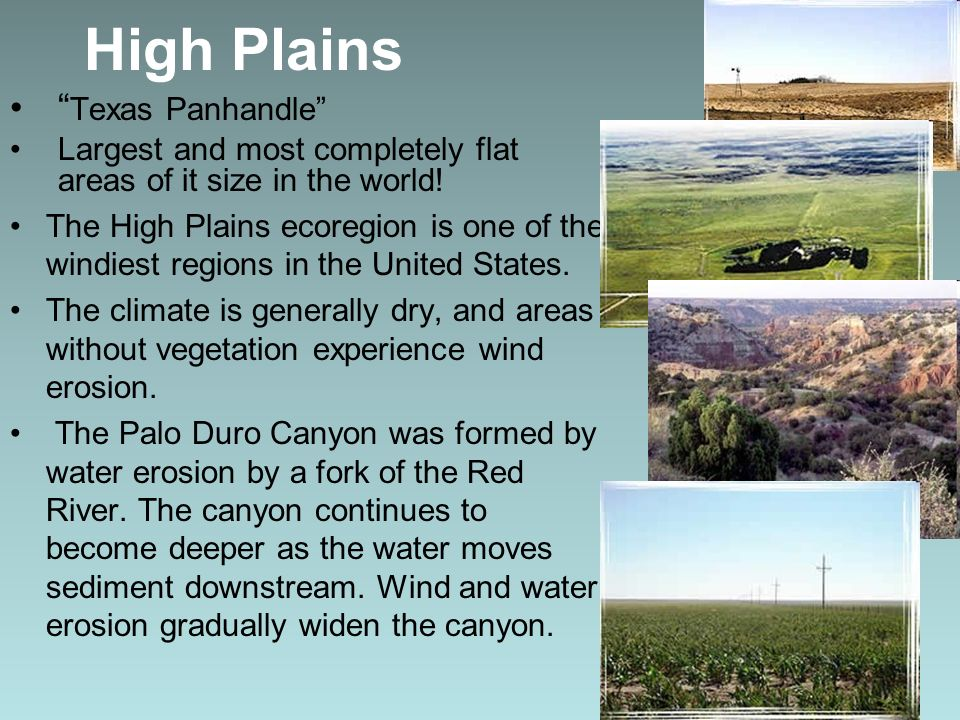 High Plains Texas Panhandle Largest and most completely flat areas of it size in the world! The High Plains ecoregion is one of the windiest regions i