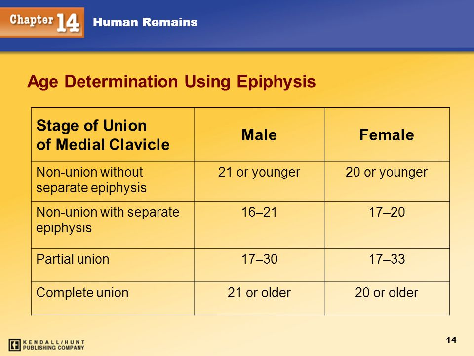 Human Remains 14 Age Determination Using Epiphysis Stage of Union of Medial Clavicle MaleFemale Non-union without separate epiphysis 21 or younger20 o
