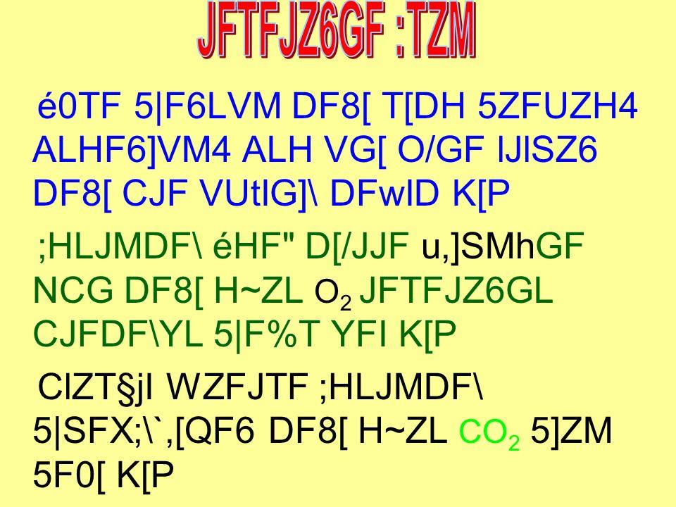 é0TF 5 F6LVM DF8[ T[DH 5ZFUZH4 ALHF6]VM4 ALH VG[ O/GF lJlSZ6 DF8[ CJF VUtIG]\ DFwID K[P ;HLJMDF\ éHF