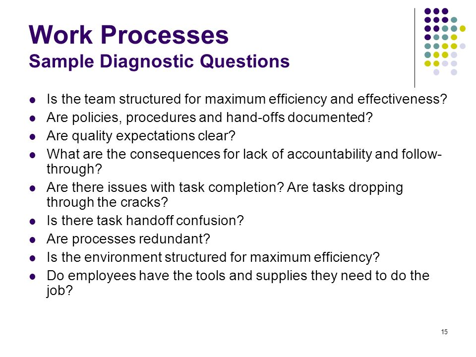 15 Work Processes Sample Diagnostic Questions Is the team structured for maximum efficiency and effectiveness? Are policies, procedures and hand-offs