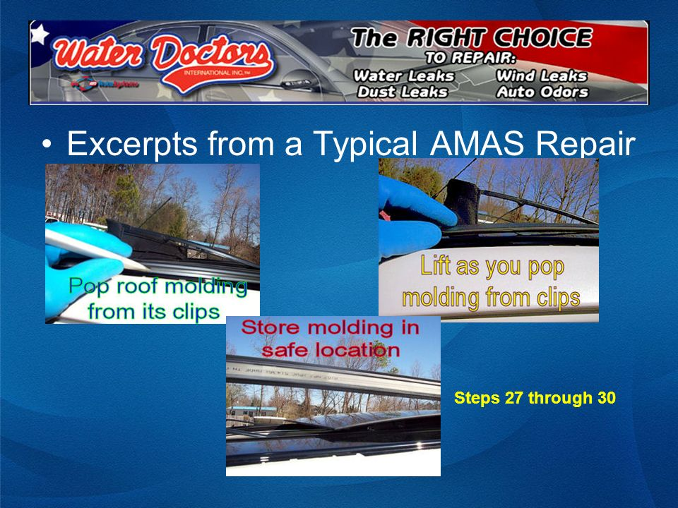 Excerpts from a Typical AMAS Repair Steps 27 through 30