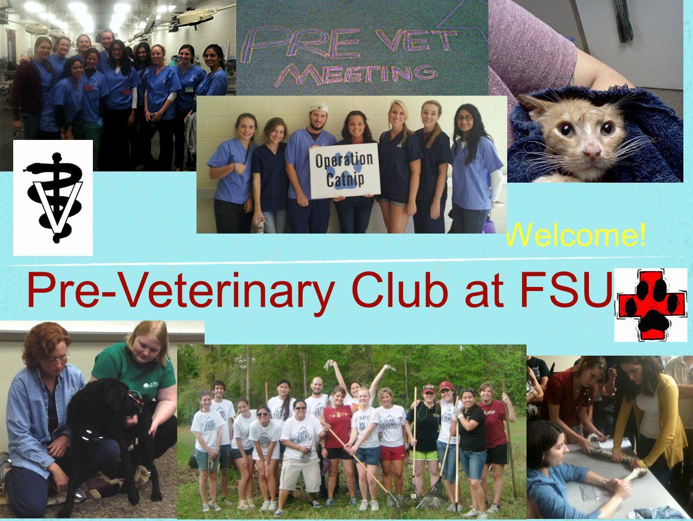 Welcome! Pre-Veterinary Club at FSU!