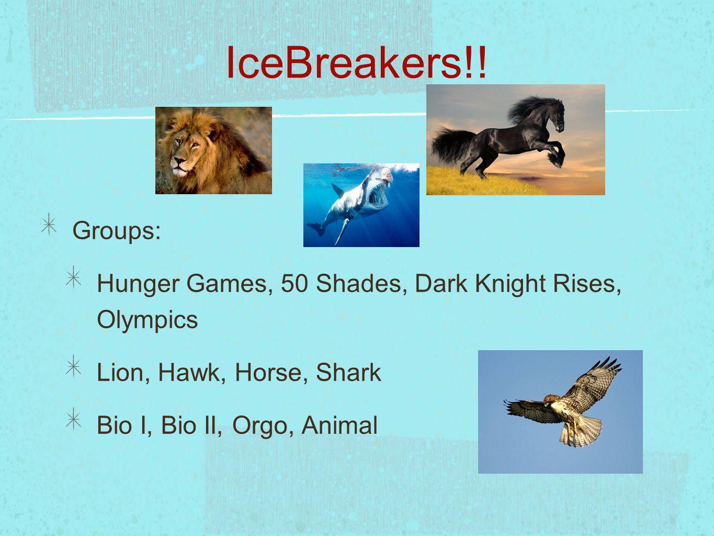 IceBreakers!! Groups: Hunger Games, 50 Shades, Dark Knight Rises, Olympics Lion, Hawk, Horse, Shark Bio I, Bio II, Orgo, Animal