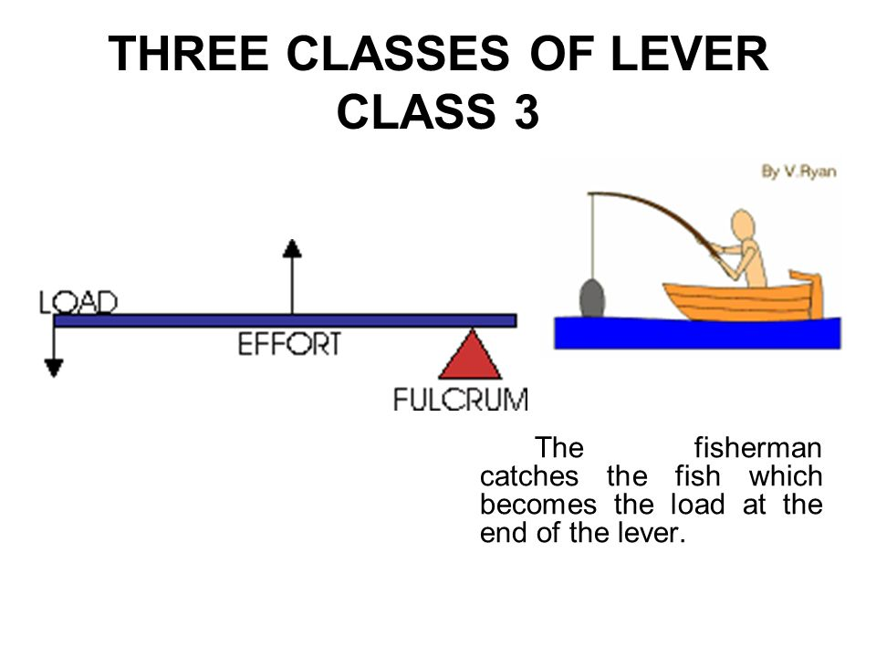 THREE CLASSES OF LEVER CLASS 3 The fisherman catches the fish which becomes the load at the end of the lever.