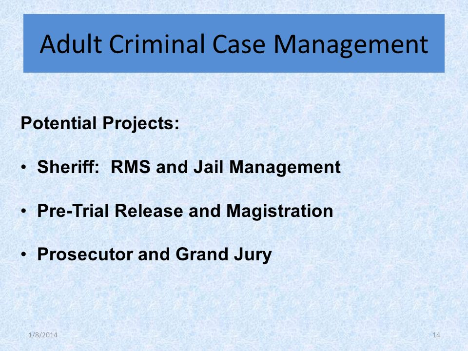 Potential Projects: Sheriff: RMS and Jail Management Pre-Trial Release and Magistration Prosecutor and Grand Jury Adult Criminal Case Management 1/8/201414