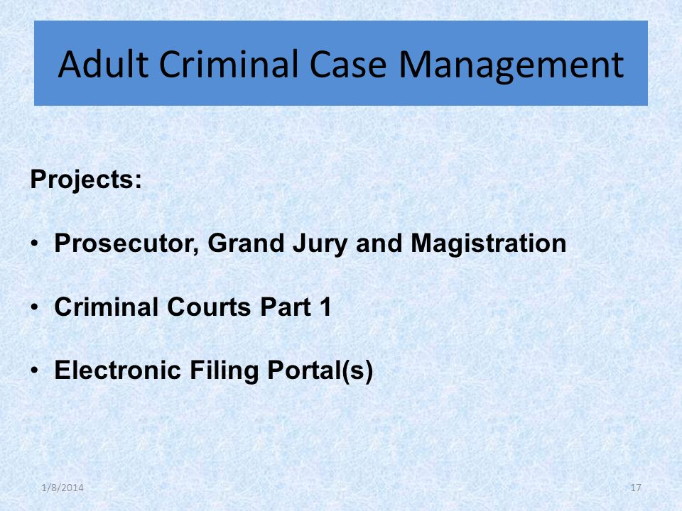 Projects: Prosecutor, Grand Jury and Magistration Criminal Courts Part 1 Electronic Filing Portal(s) Adult Criminal Case Management 1/8/201417