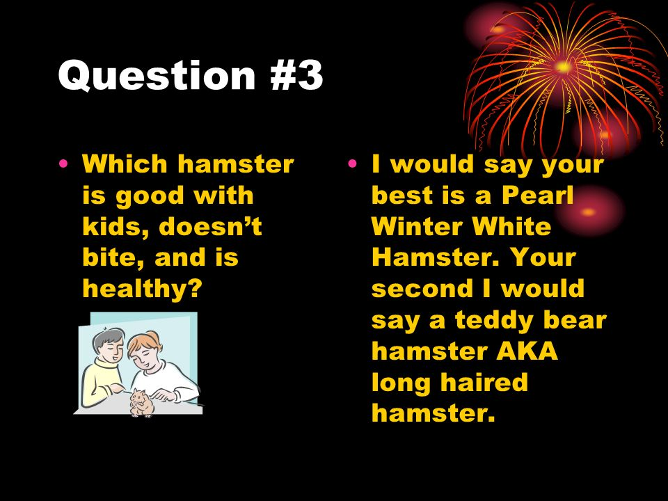 Question #3 Which hamster is good with kids, doesnt bite, and is healthy.