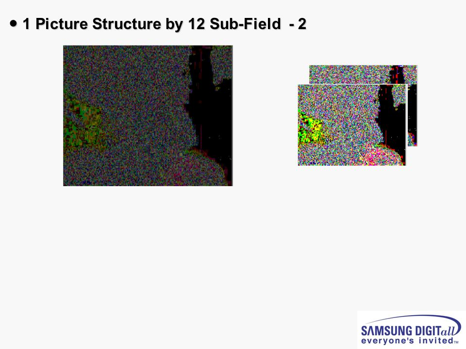 1 Picture Structure by 12 Sub-Field - 2 1 Picture Structure by 12 Sub-Field - 2