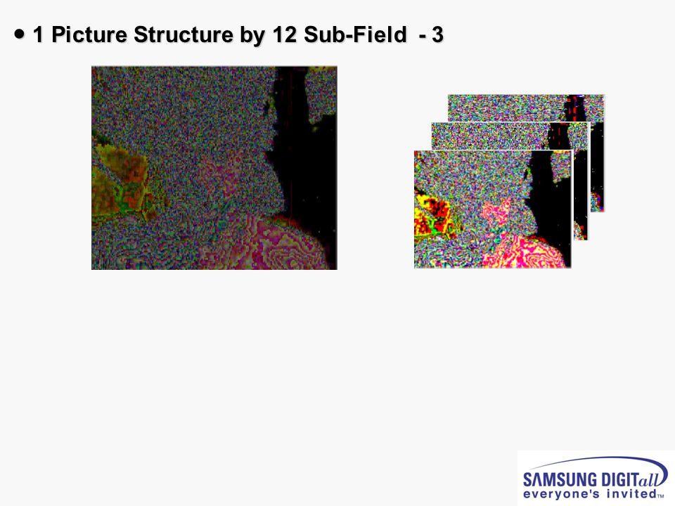 1 Picture Structure by 12 Sub-Field - 3 1 Picture Structure by 12 Sub-Field - 3