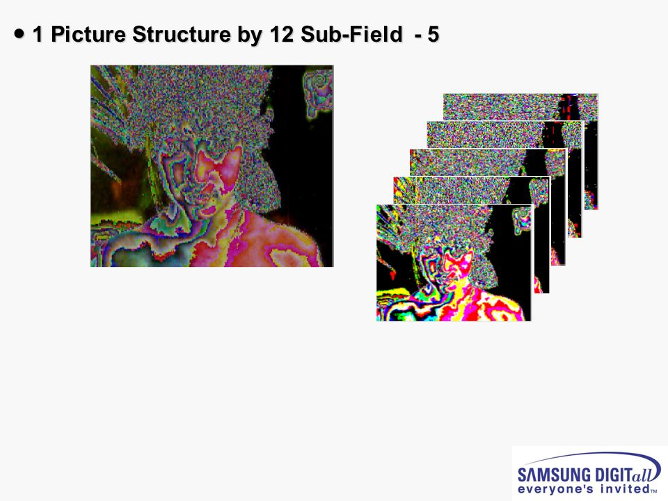 1 Picture Structure by 12 Sub-Field - 5 1 Picture Structure by 12 Sub-Field - 5