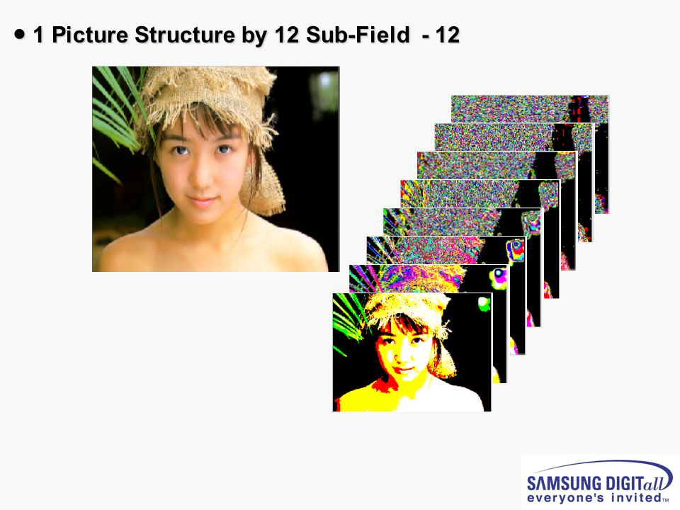1 Picture Structure by 12 Sub-Field - 12 1 Picture Structure by 12 Sub-Field - 12