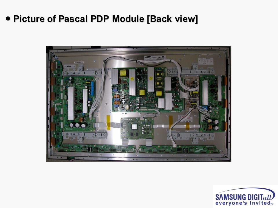 Picture of Pascal PDP Module [Back view] Picture of Pascal PDP Module [Back view]