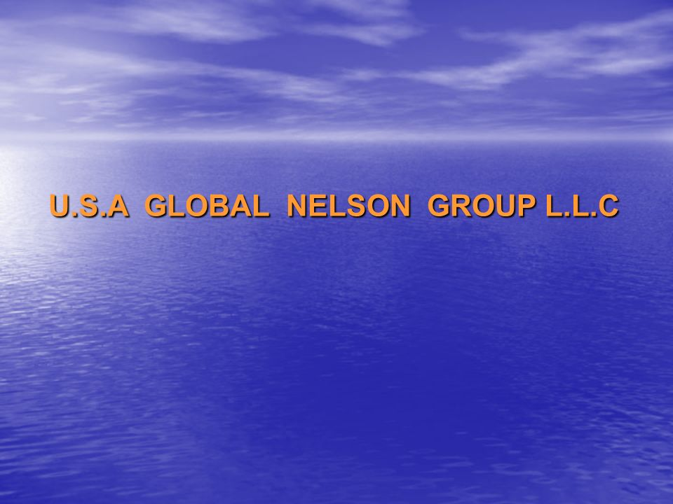 U.S.A GLOBAL NELSON GROUP L.L.C