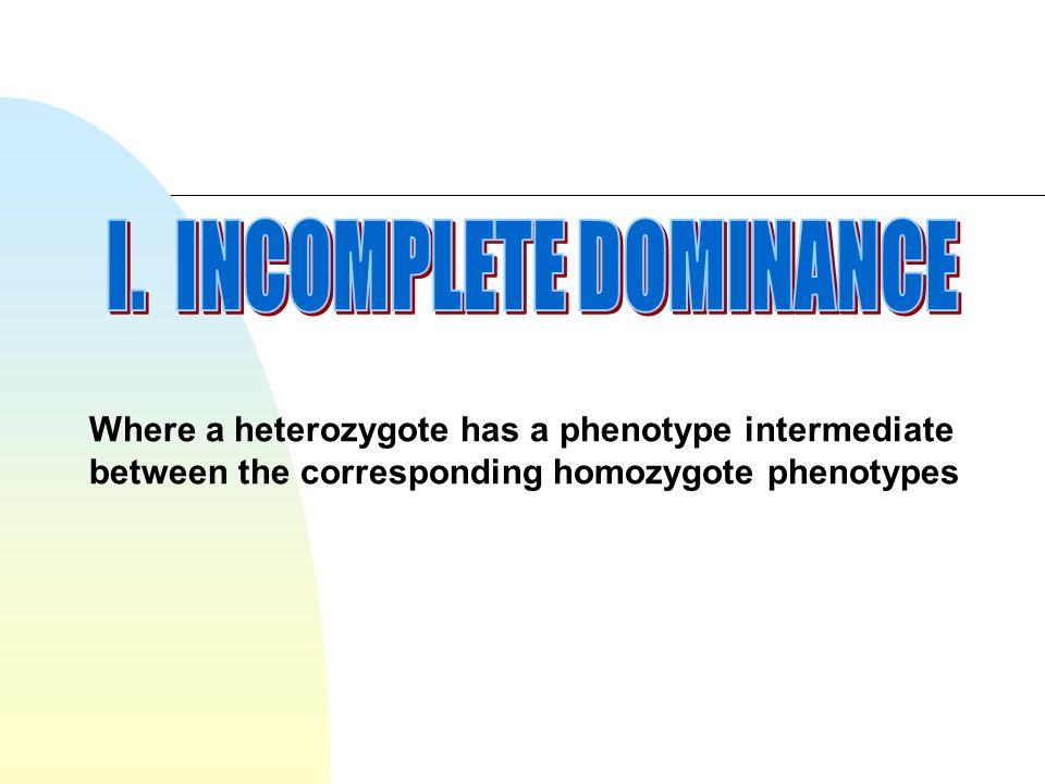 Where a heterozygote has a phenotype intermediate between the corresponding homozygote phenotypes