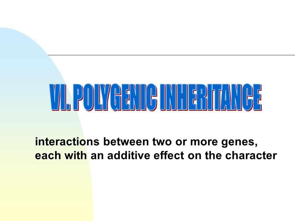 interactions between two or more genes, each with an additive effect on the character