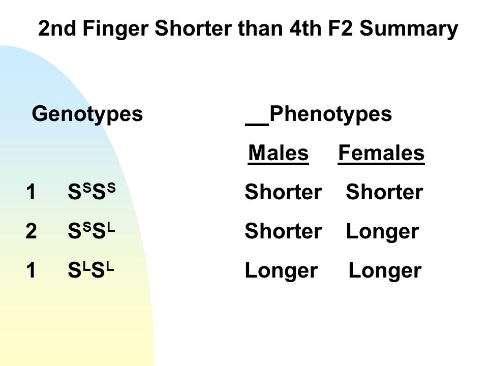 2nd Finger Shorter than 4th F2 Summary Genotypes Phenotypes Males Females 1 S S S S Shorter Shorter 2 S S S L Shorter Longer 1 S L S L Longer Longer