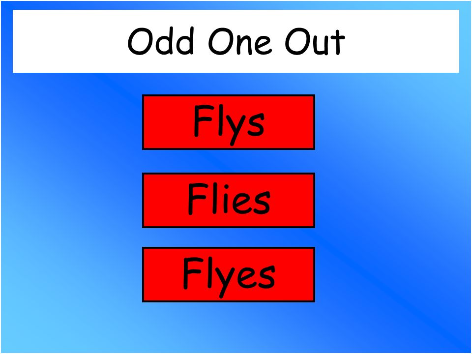 Odd One Out Flies Flyes Flys