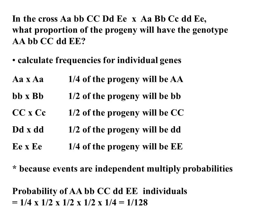 In the cross Aa bb CC Dd Ee x Aa Bb Cc dd Ee, what proportion of the progeny will have the genotype AA bb CC dd EE? calculate frequencies for individu