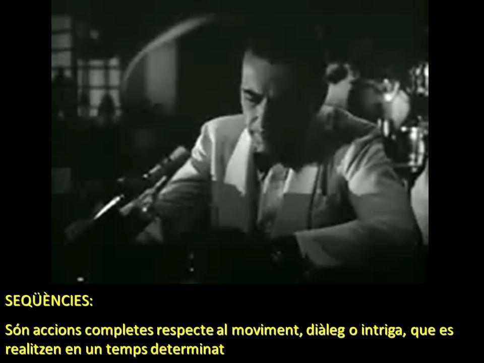 SEQÜÈNCIES: Són accions completes respecte al moviment, diàleg o intriga, que es realitzen en un temps determinat